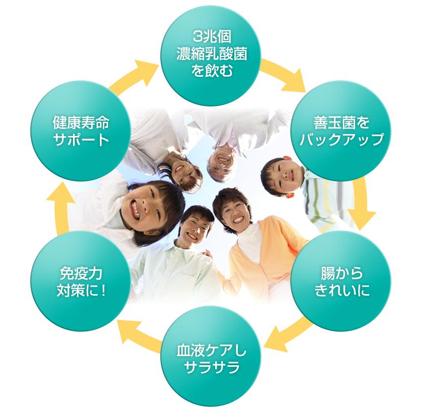 免疫力対策!3兆個濃縮乳酸菌で、健康家族幸せ家族!