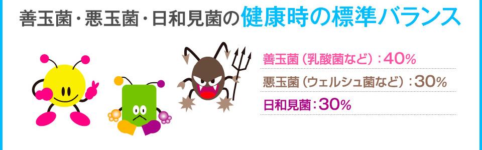 善玉菌・悪玉菌・日和見菌の健康時の標準バランス