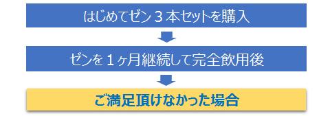 乳酸菌生産物質原液「ゼン」返金保証チャート1